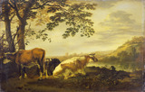 Cattle on a River Bank