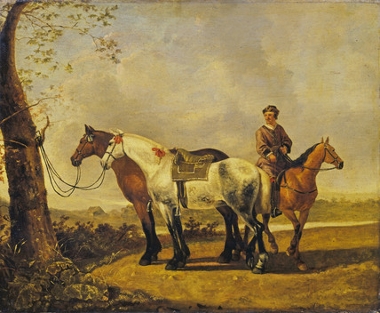 Horses tied to a Tree