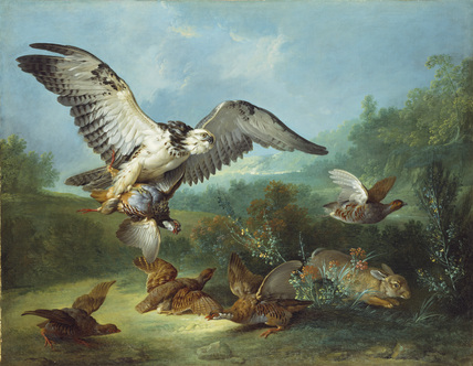 Hawk attacking Partridges and a Rabbit