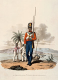 A Private of the 5th West India Regiment, 1812