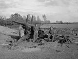British medium guns, 1944 (c)