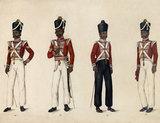 Madras Army, 1835 (c)