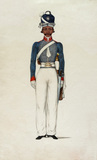 Sowar, Madras Light Cavalry, 1835 (c)