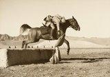 Dummy sword thrust practice, 9th Hodson's Horse, 1920s