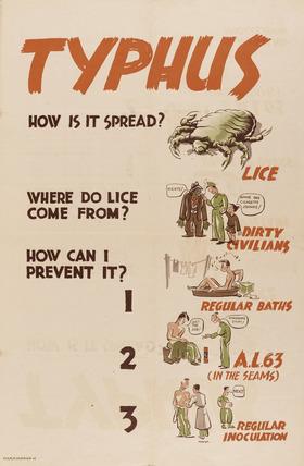 'Typhus',  1944 (c)