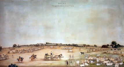 'Dhana Colonel Skinner's Farm', 1828
