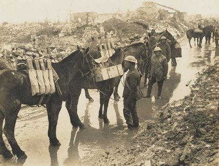 Horses carrying ammunition, 1917 (c)