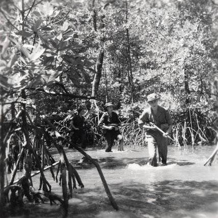 An Army patrol in Malaya, 1957