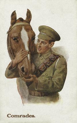 'Comrades', 1914-1918