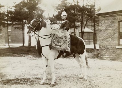 Drum-horse, 3rd Prince of Wales's Dragoon Guards, 1890 (c)