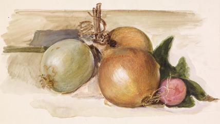 Still-Life - Study of Onions