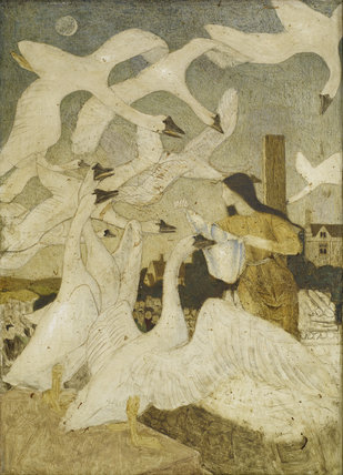 The Wild Swans (The Twelve Brothers Turned Into Swans)