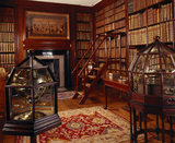 The Library at Dunham Massey, which is one of the least changed of the 18th century interiors