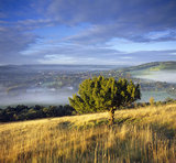 A view, westward, from Box Hill in the early morning