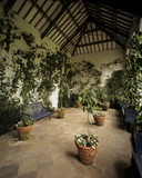 The interior of the Orangery at Dunham Massey showing potted plants