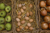 Three baskets of apples, eggs and onions at the farm shop at Osterley Park