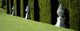 Stone urns set within niches in a clipped yew hedge at Buscot in Oxfordshire