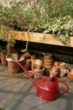 Terracotta plant pots and watering can for use in the garden at Llanerchaeron, a C18th Welsh estate, near Aberaeron, where they produce home grown fruit, vegetables and herbs