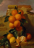 ORANGES by A.Mensaque (1863)
