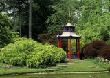 The Water Garden at Cliveden with the brightly painted red, blue & gold pagoda that was bought in 1900 & set on an island
