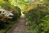 A view along the path in the Woodland Walk at Quarry Bank House at Styal, Cheshire