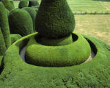 A yew tree, known as &quot;The Master&quot;,  atop a spiral mount, part of the very rare survival of the pre-1700 garden representing the Sermon on the Mount at Packwood House, Warwickshire