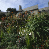 Lush planting with exterior of Coleton Fishacre beyond, the Arts & Crafts-style house designed in 1925 for Rupert and Lady Dorothy D'Oyly Carte, at Kingswear, Devon