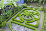The small knot garden with dwarf box hedging at Overbecks Garden, Salcombe, Devon