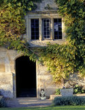 Autumn view of door and windows at Bateman's in East Sussex with a cat sitting near the door