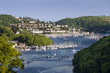 View of the Dart Estuary downstream from Greenway, Devon, which was the holiday home of the crime writer Agatha Christie between 1938 and 1976