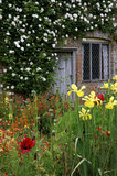 Part of the Cottage Garden at Sissinghurst Castle Garden with the first rose planted by Vita Sackville-West, the white Madame Alfred Carriere, visible on the wall