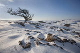 Winter on Malham Moor