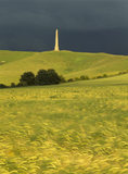 The Lansdowne Monument can be seen on top of Cherhill Down with golden cereal fields in foreground