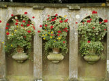 Close shot of stone arches and urns filled with Pelargoniums in the Italian Garden at Belton House