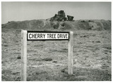 Cherry Tree Drive