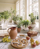 The Orangery; food laid out on a table with a number of plants in pots and tubs in the background