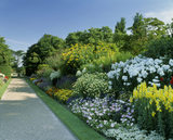 The Herbaceous borders at Nymans Garden flourish with beautiful blooms