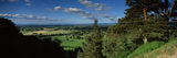 Panoramic view from among the trees on Alderley Edge across fields of crops and grass with clouds in a blue sky on a summers day