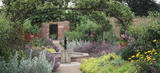 """The Pear Avenue in the Kitchen Garden at Beningbrough Hall, with Monarda """"Cambridge Scarlet"""" (Bergamot), Nepeta (Catmint), Alliums and Alchemilla Mollis (Lady's mantle)"""