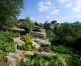 View of the rock formation called Happy Days at  Brimham Rocks, North Yorkshire