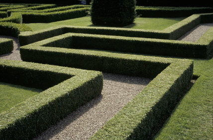 A view of the Knot Garden at Little Moreton Hall, taken in August
