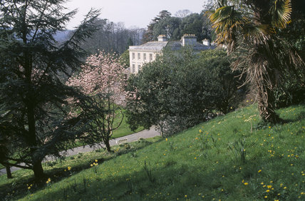 A View of the house in the distance with a grass bank and various trees in the foreground, at Greenways