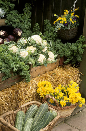 View of the farm shop at Osterley Park showing vegetables and flowers
