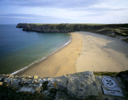 A view of Barafundle Bay, part of the Stackpole Estate, seen from the coastal path