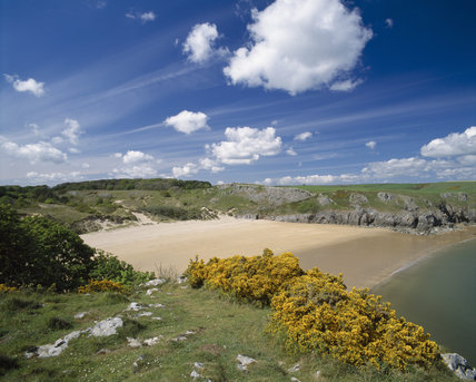 View of the beach at Barafundle Bay, near Stackpole Quay on and bright and sunny summer's day