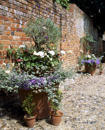 A view of layered flowerpots stood against a red brick wall, in the gardens at West Green