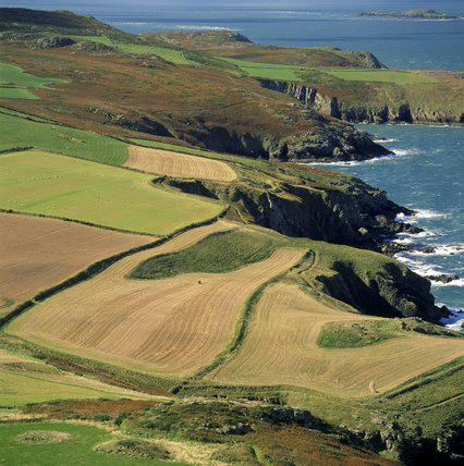 Looking west south west from Penberry toward St. David's Head and Carn Llidi