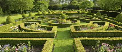The Parterre at Westbury Court Garden, Gloucestershire, UK with geometric box hedging
