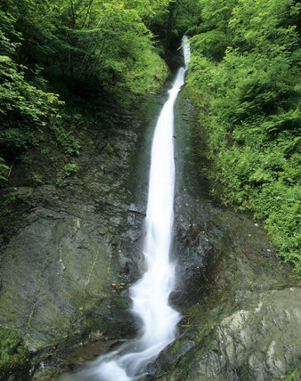 The Spectacular White Lady Waterfall In Lydford Gorge