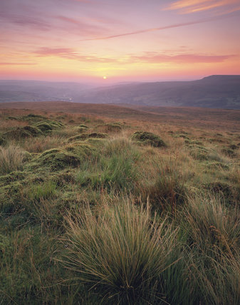 Overview of summer sunrise from Pule Hill on the Marsden Moor Estate, showing hillocks of mosses and grasses in the foreground and farmland and the village of Marsden in the distance